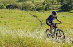 Marin Wildcat Trail WFG 3-27.5 2019 BLACK VÝPRODEJ MARIN (USA)
